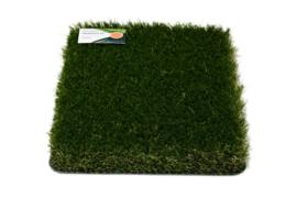 AGN Grass Efficiency 50