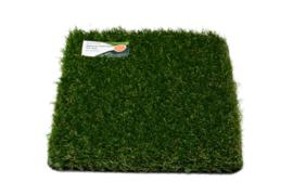 AGN Grass New Slide 42