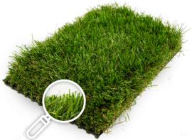 Gras van de Buren Diamond+ non-directional