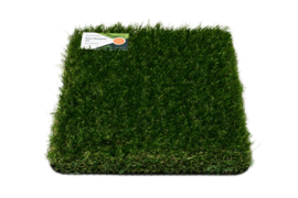 AGN Grass Ranking Master 45