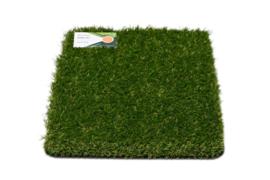 AGN Grass Inspiring 30