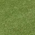 Visie grass-kunstgras 4 breed tourmalijn