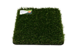 AGN Grass Agressive Wonder 34