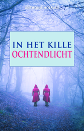 In het kille ochtendlicht - Anthonie Holslag