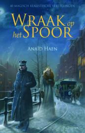 Wraak op het spoor - Anaïd Haen - ebook