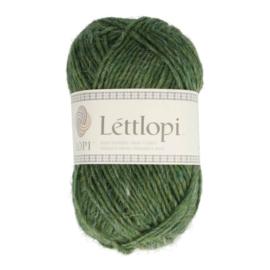 LÉTTLOPI IJSLANDSE WOL | Cellery Green (9421)