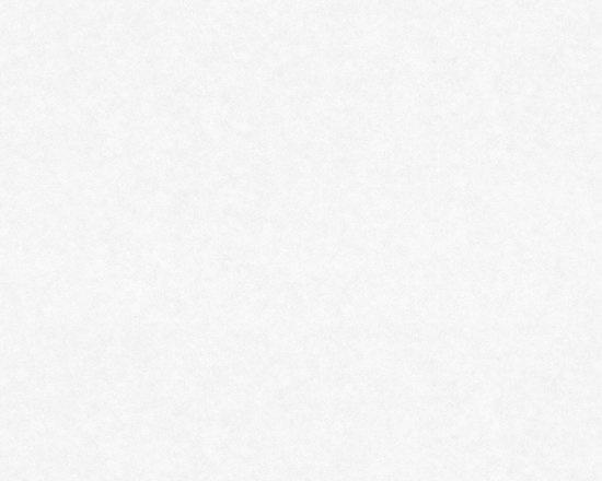 25 m2 wit renovlies-pro 11195 (nieuw extra wit)