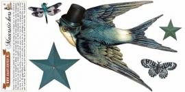 Zwaluw met sterren - muurstickers
