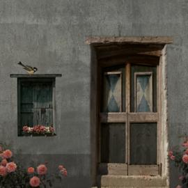 Schuttingdoek 180x180 cm - oude deur blauw