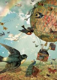 42 - Vogelvlucht