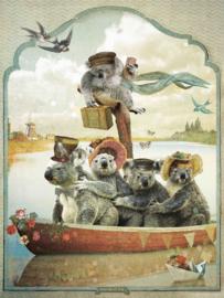 Koala's - poster 30x40 cm