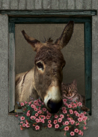 Tuinposter 50x70 cm - ezel