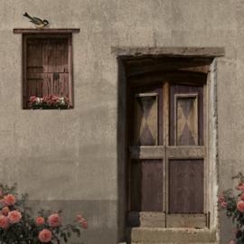 Schuttingdoek 180x180 cm - oude deur grijs
