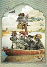 Ansicht nr. 35 - Koala's