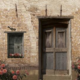 Schuttingdoek 180x180 cm - oude deur met lichte baksteen