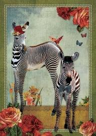 Ansicht nr. 25 - Zebra`s