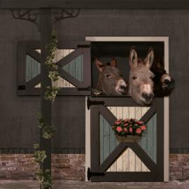 Schuttingdoek 180x180 cm - ezels antraciet