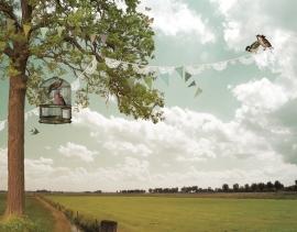 Behang Lentedag <-332.5 cm->