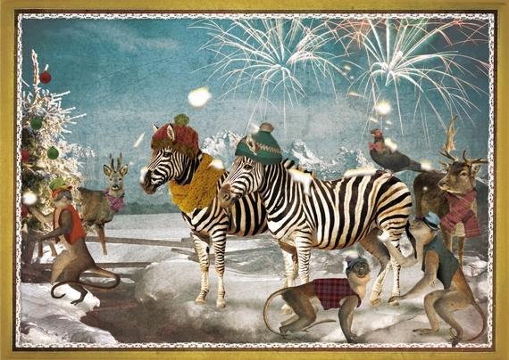 """""""Zebra's"""" 4 stuks Luxe kerstkaarten met mooie envelop"""