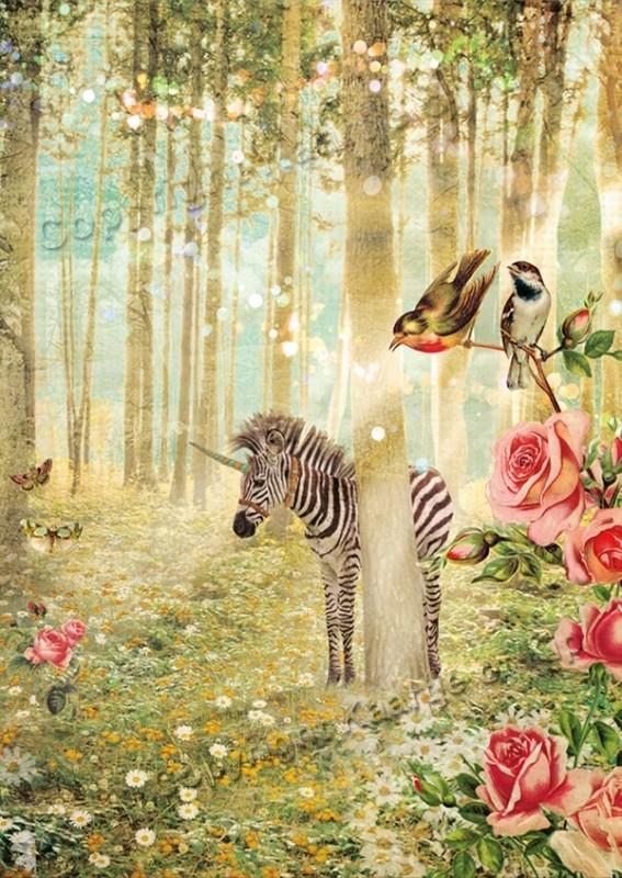 43 - Zebra