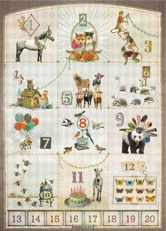 123 poster 50x70 cm