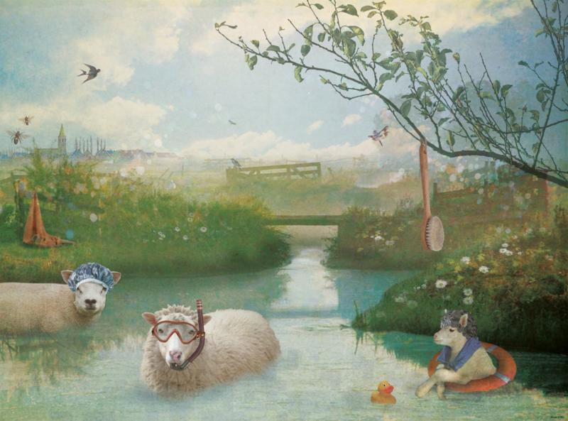 Behang schapen - 260 cm hoog x 350 cm breed