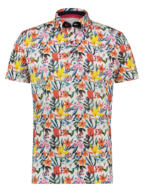 Polo White Floral Jersey 22.03.334