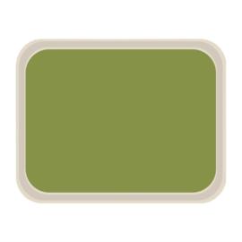 DS088 -Roltex Original dienblad groen 47x36cm