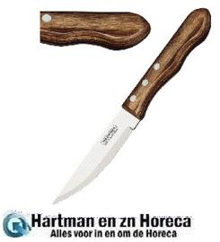 GE994 -Tramontina Jumbo steakmessen