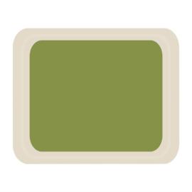 DS091 -Roltex Original dienblad groen 42x32cm