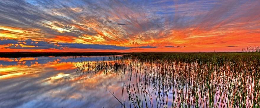 Everglades 4Ocean