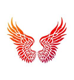 Engel vleugels