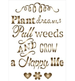 Plant dreams tekst Pronty