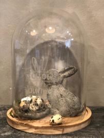 "Paassjabloon ""Follow the bunny"""