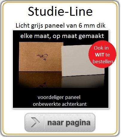 Muspaneel-Studie-Line-Maatwerk.jpg