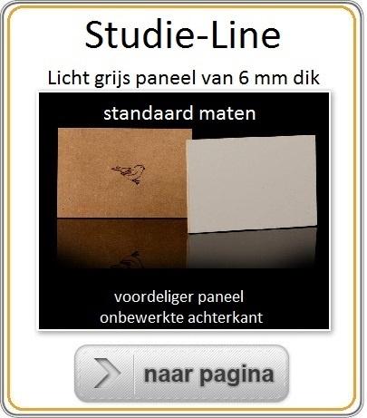 Muspaneel-Studie-Line-standaard maten.jpg
