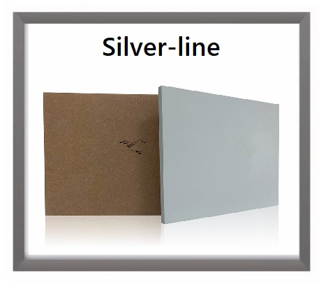 Silver-line-hoofdpagina-2.png