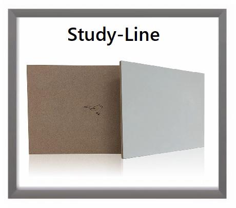 Studie-line-hoofdpagina3.png