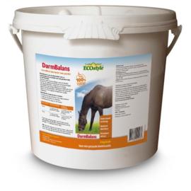 DarmBalans - Ecostyle 4 kg