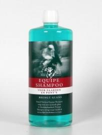 GN Equipe Shampoo 1000ML 103032