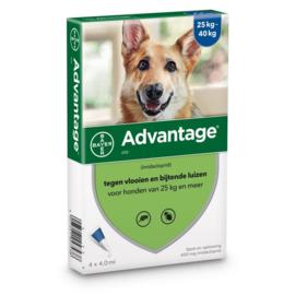Advantage-400 (L) HOND > 25 kg - 4 pip - REG NL 9558