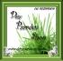 DaisyPaardenShop