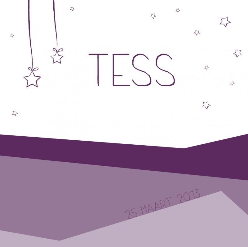Geboortekaartje Tess