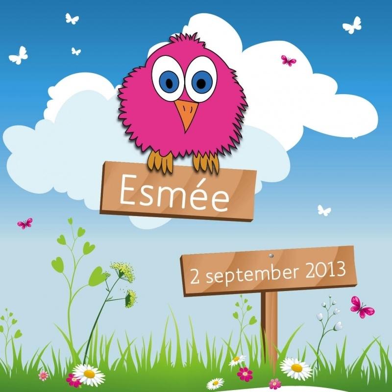 Geboortekaartje Esmée