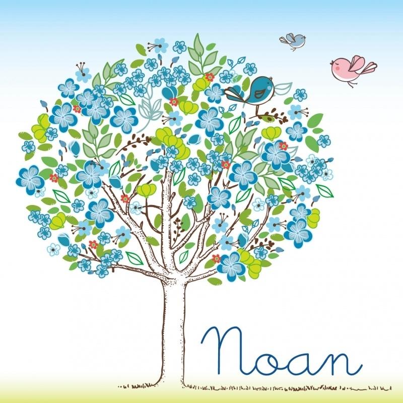 Geboortekaartje Noan