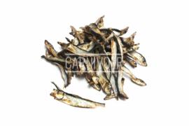 Carnivoer Visjes 200 gram