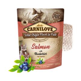 Carnilove  Pouch - Salmon & blueberries (puppies) 300 gram