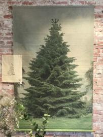 Kerstboom schoolplaat XL