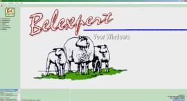 Belexpert Managment Programma