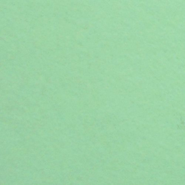 Wolvilt Soft mint 15x20